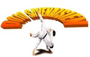 Tournoi amical de judo de Savenay